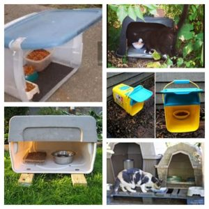 Feeding Station Options | Alley Cat Allies